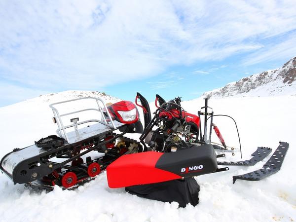 Фотогалерея мини-снегоходов - фото 8
