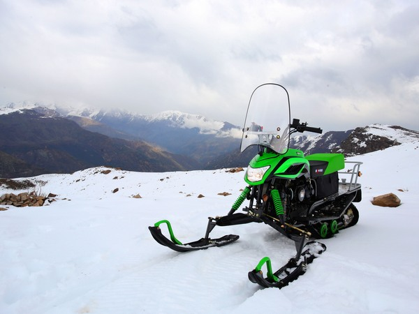 Фотогалерея мини-снегоходов - фото 17