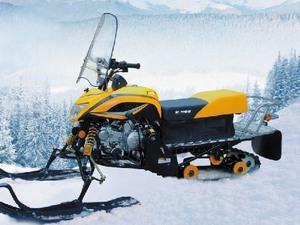 Снегоход Ирбис Динго