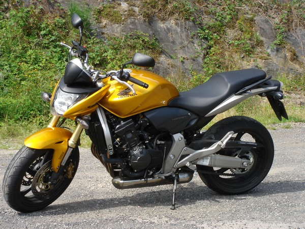 Фотогалерея мотоцикла Honda Hornet (Хонда Хорнет) CB 600 F - фото 14