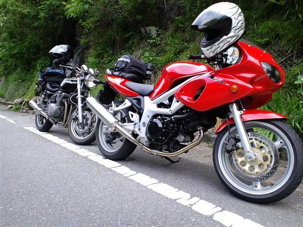 Фотогалерея мотоцикла Suzuki (Сузуки) SV (СВ) 400S  - фото 16
