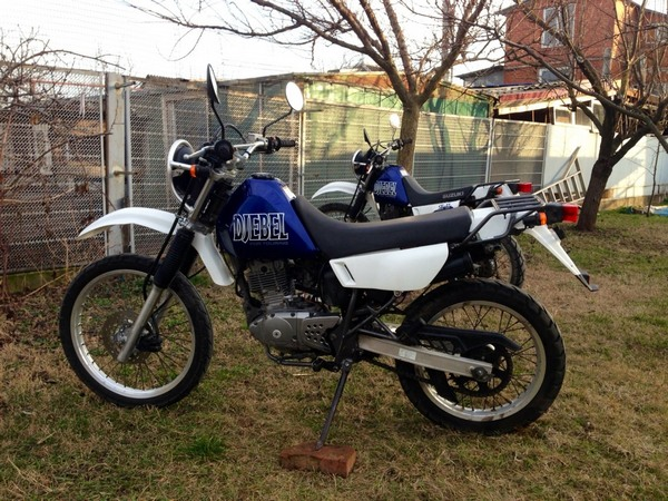 Фотогалкрея мотоцикла Suzuki Djebel (Cузуки Джебел) 200 - фото 13