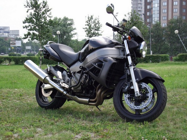 Фотогалерея мотоцикла Хонда Икс 11 - фото 5