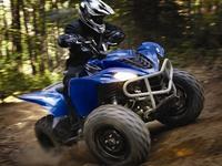 Обзорная статья по квадроциклу Yamaha Wolverine 450