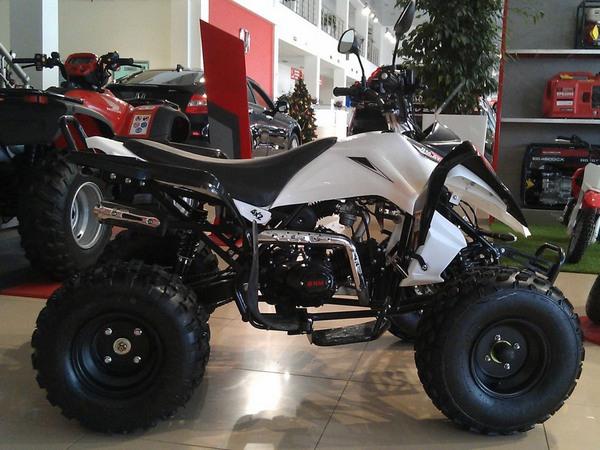 Фотогалерея квадроцикла Рысь 125 Sport - фото 9