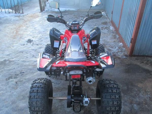 Фотогалерея квадроцикла Рысь 125 Sport - фото 12