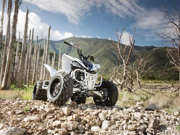 Фотогалерея квадроцикла Yamaha Raptor 250 R  - фото 8