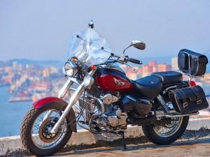 Обзор мотоцикла Ирбис Гарпия 250