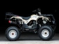 Квадроцикл Ирбис 150 - оригинальный и современный