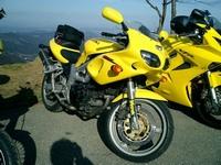 Обзор характеристик необычного мотоцикла Suzuki SV 400