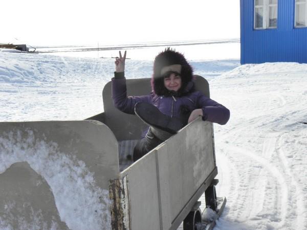 Фотогалерея нарты для снегохода фото - 11