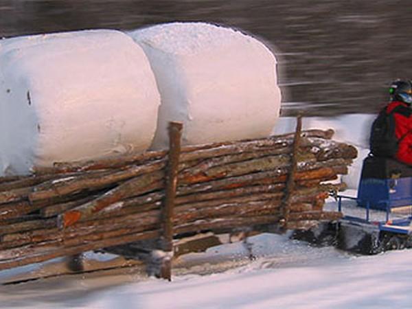 Фотогалерея итальянских снегоходов Alpina фото - 9